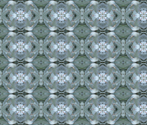 Eucalyptus fabric by bunyipdesigns on Spoonflower - custom fabric