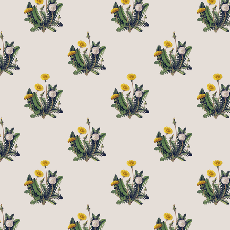 Dandelion on Vintage Cotton White fabric by thistleandfox on Spoonflower - custom fabric