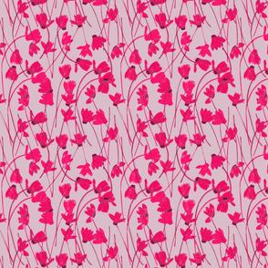 Flowering Cyclamen #1