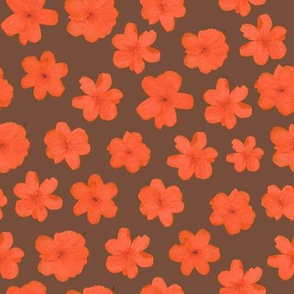 Flowering Orange