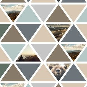 explore // bear triangles