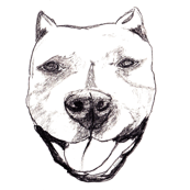 Sketched Adorable Happy Doggy Face