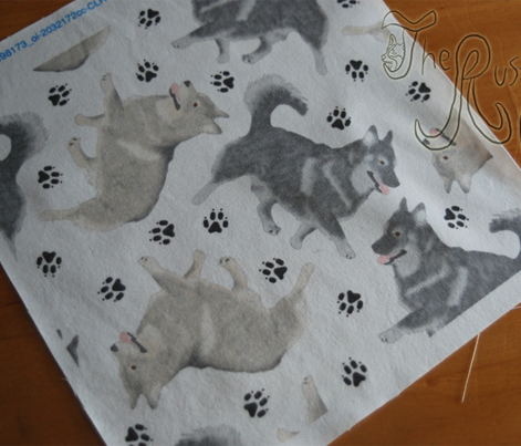 Trotting Swedish Vallhund and paw prints - white