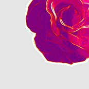 Rcarolynn_s_big_pink_rose_special_order_for_silk_shop_thumb