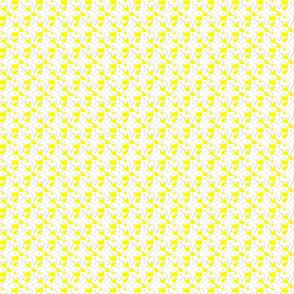 Buttercup Surprise 200901
