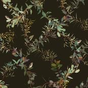 Eucalyptus Foliage Lattice with Birds n Bugs on dark brown L
