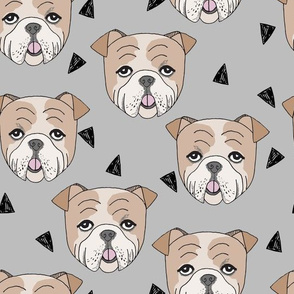 english bulldogs // bulldog dog dog breed fabric grey cute dogs