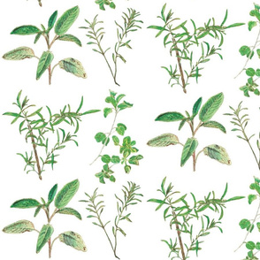 herb_design_10_in_x_12_flatten_2