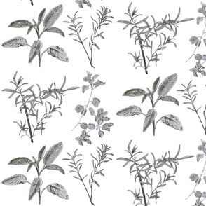 herb_design_10_in_x_12_grey_2-ch