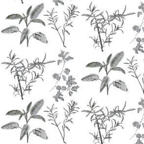 herb_design_10_in_x_12_grey_2-ch
