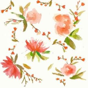 Peonies watercolor peach florals