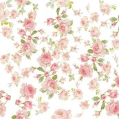 Rsaint_colette_june_roses__shop_thumb