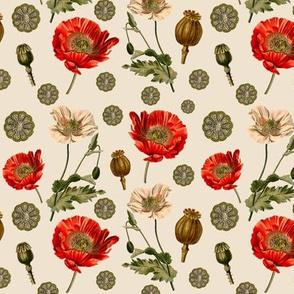 Scientific Poppies