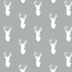white buck on grey // northern lights