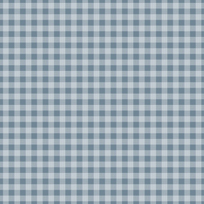 gingham mesh white on blue