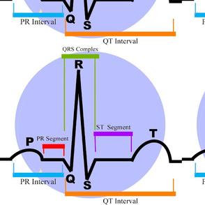 Cardiac Rhythm ST Segment-ed