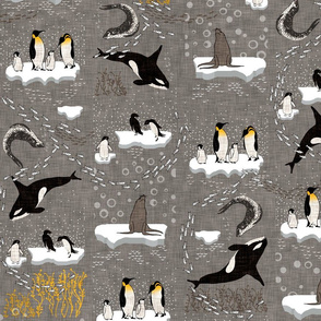 Antics In Antartica (grey)