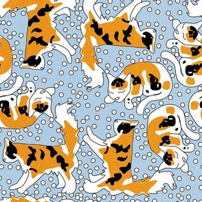 Fuzzy Calico Cats and Dots