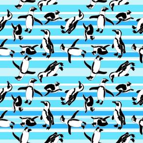 Penguins On Teal Stripes