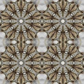 Pattern of David