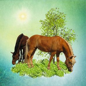 Horse - 005