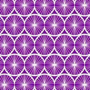 Spinning Wheel - Violet