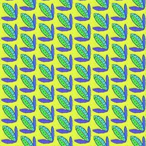 Blue Maize Corn