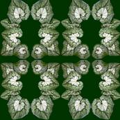 3577P leaf wreath