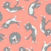 Grey_cats_on_peach_shop_thumb