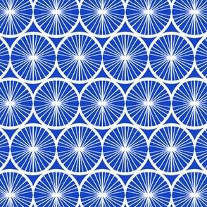 Spinning Wheel - Blue