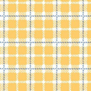 Light Orange & White Plaid