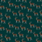 Deer Park Herd on Hunter Green
