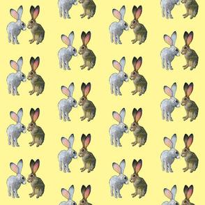 rabbits rabbits rabbits