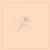 Long Spur Violet (tan background)