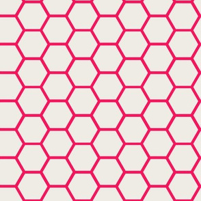Envelop Honeycomb in Fuchsia