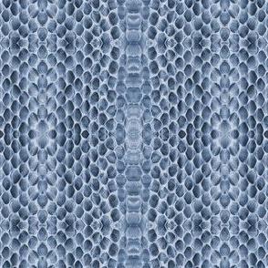 snake skin dreaming-indigo