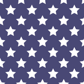 Patriotic Stars Large