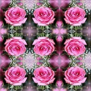 Pink Roses Small