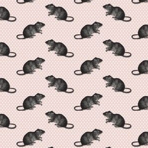 rats on white dots pink background