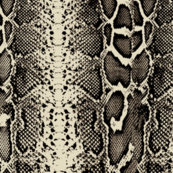 Snakeskin_shop_thumb