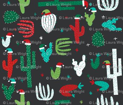 christmas cactus on grey