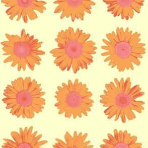 crazy daisy on cream