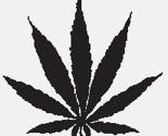 Rrrr2-467_pot_leaf_thumb