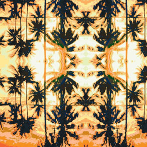 Hawaii Palm trees sun