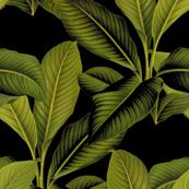 Palm In Palm ~ Black