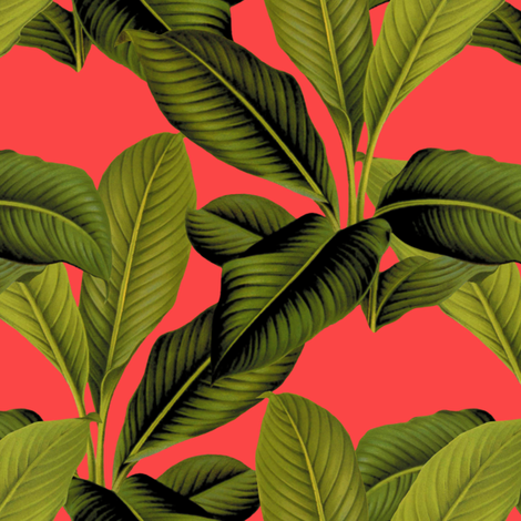 Palm In Palm ~ Madame Du Barry   fabric by peacoquettedesigns on Spoonflower - custom fabric