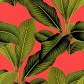 Rrrpalm_in_palm___madame_du_barry___peacoquette_designs___copyright_2015._shop_thumb