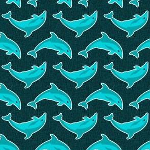 Perth Dolphin