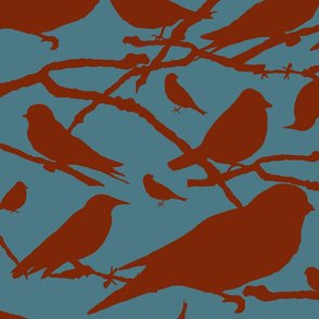 2 Color Birds