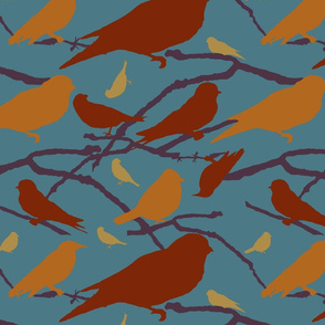 Mulit-colored birds, 2